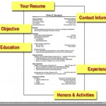 Resume tips for fresher's